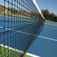Der Tennisarm ist eine Erkrankung, welche häufig im Sport vorkommt, insbesondere beim Tennis. Da die Erkrankung oftmals bei Tennisspielern auftritt, nennt man die Erkrankung Tennisarm.